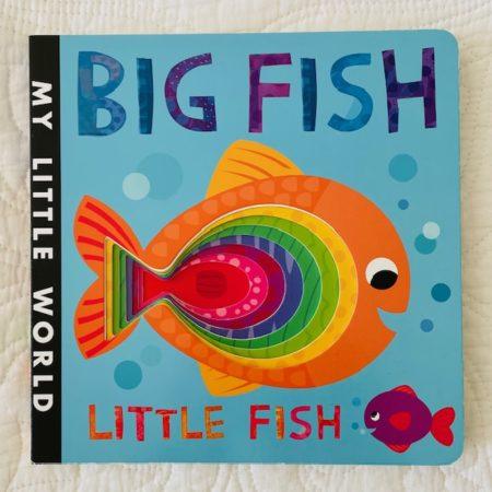 MY LITTLE WORLD:  BIG FISH, LITTLE FISH BOARD BOOK